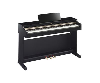 唐山雅马哈电钢琴YDP-162
