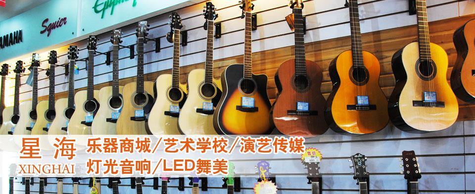 家长和星海唐山艺术培训学校如何帮孩子选择适合的乐器!
